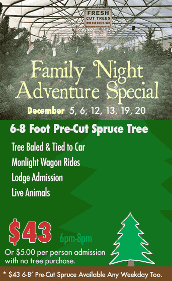 $39 pre-cut spruce trees - weekdays only